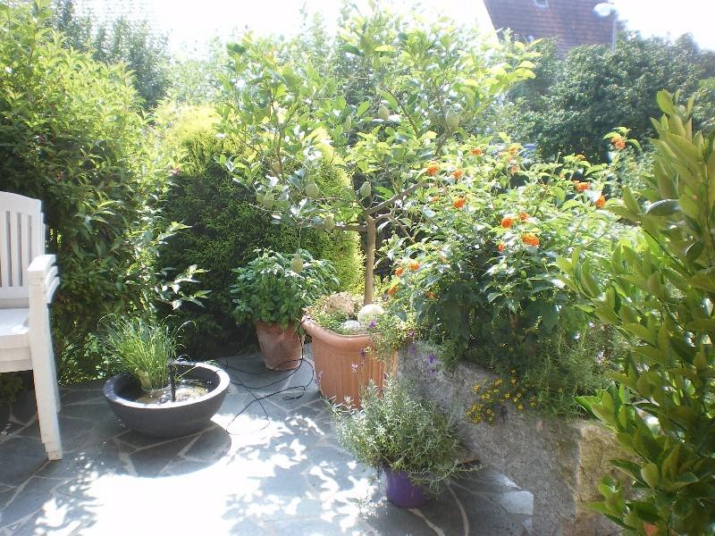 Terrasse mit Pflanzen